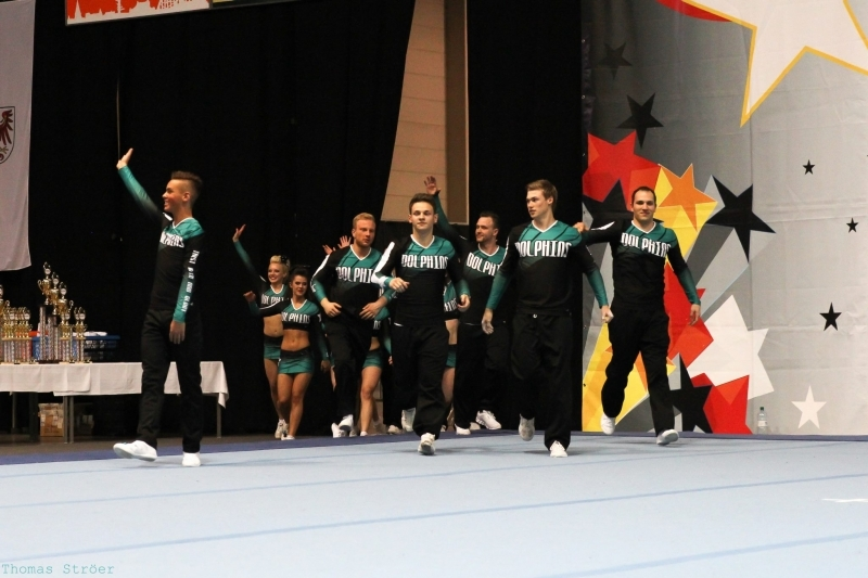 Dolphins COED